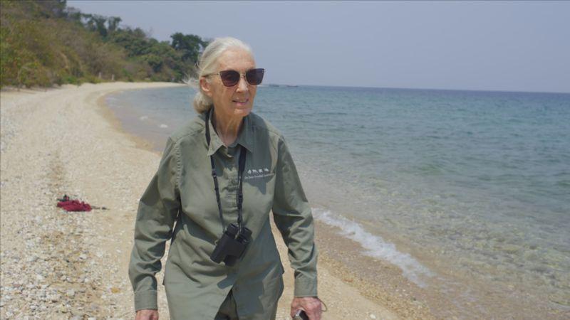 TAB 200419 Jane Goodall TheHope_07-1587385995199