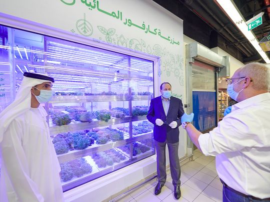Majid Al Futtaim has recently inaugurated its third in-store hydroponic farm at its Carrefour market in Al Wasl.
