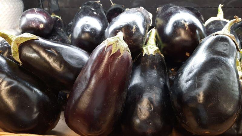 FTC eggplant-1588150156305