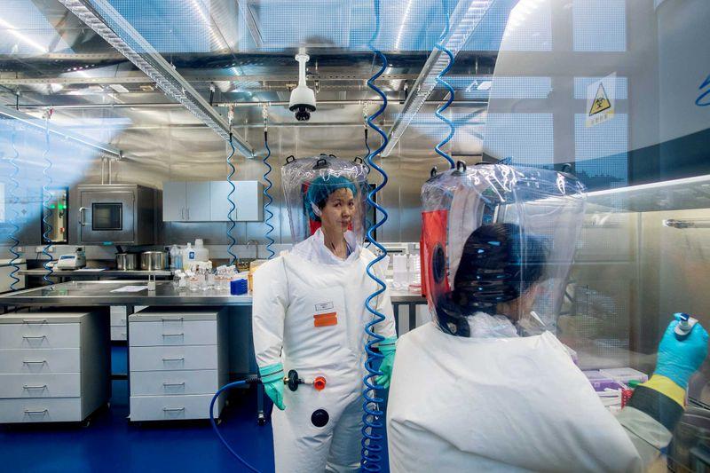 Inside the P4 laboratory in Wuhan in 2017