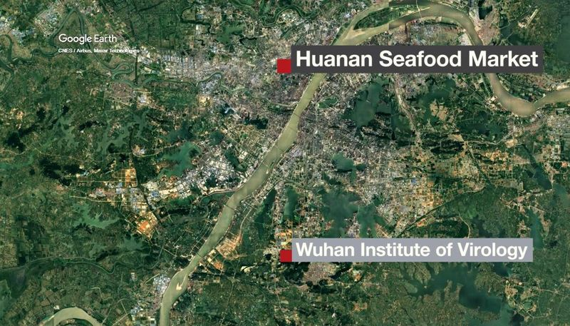 Wuhan Institute of Virology and the Huanan Seafood Wholesale Market.