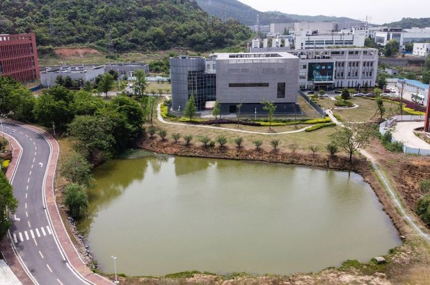 Wuhan Institute of Virology biosafety