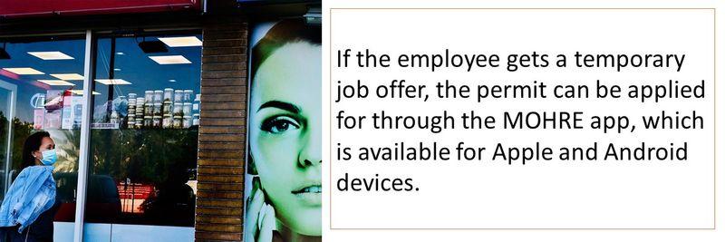 online temp work permit 1-11