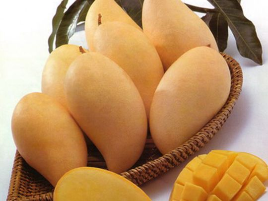 Eating mangoes can reduce older women's facial wrinkles