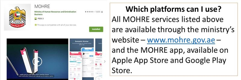 MOHRE services still available onlin