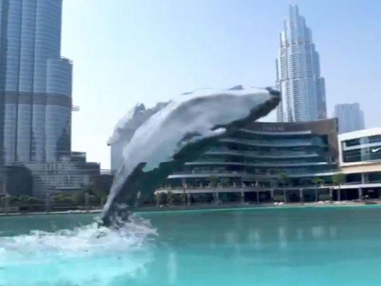 Dubai Mall whale