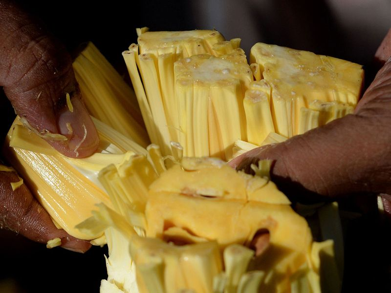 India's 'superfood' jackfruit goes global