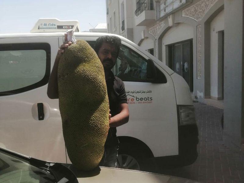 Jackfruit UAE