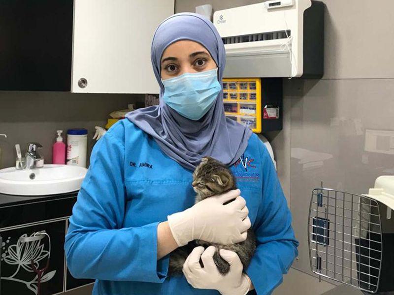 Dr Amira Elsayed