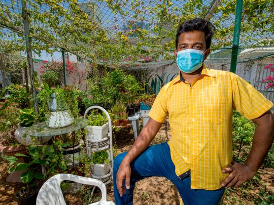 Meet Dubai expat who manages with produce from his own kitchen garden, poultry farm