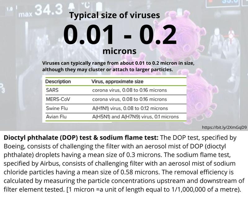 virus size