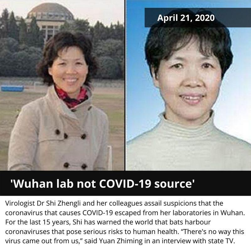Shi Zenghli virologist chinese bat woman