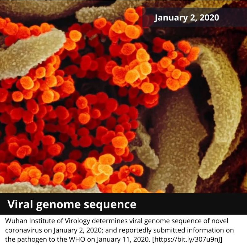 viral genome sequence