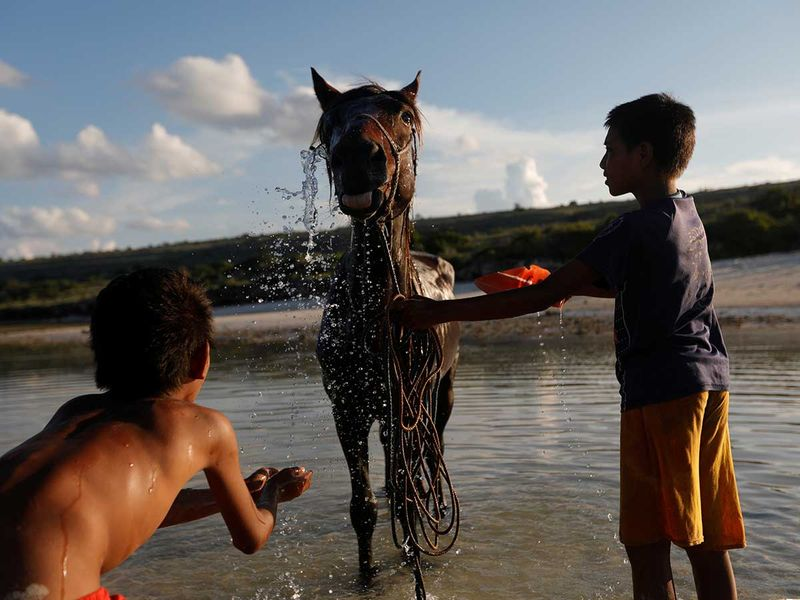 2020-06-02T230336Z_574189756_RC2B1H9HW3L0_RTRMADP_3_CLIMATE-CHANGE-INDONESIA-SUMBA-(Read-Only)
