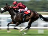 Kameko triumphed over Pinatubo at Newmarket.