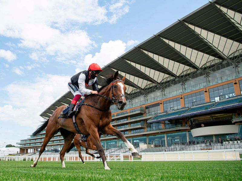 Frankly Darling brought up a landmarth half century of Royal Ascot wins for top handler John Gosden uwhen winning the Group 2 Ribblesdale Staks under a typically consumate ride by Frankie Dettori.