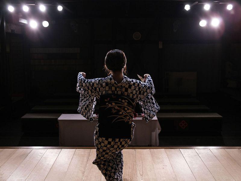 Pandemic pushes Japan geisha to get online