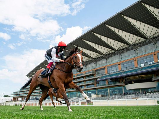 Royal ascot still managed to thrill, despite the lack of fans