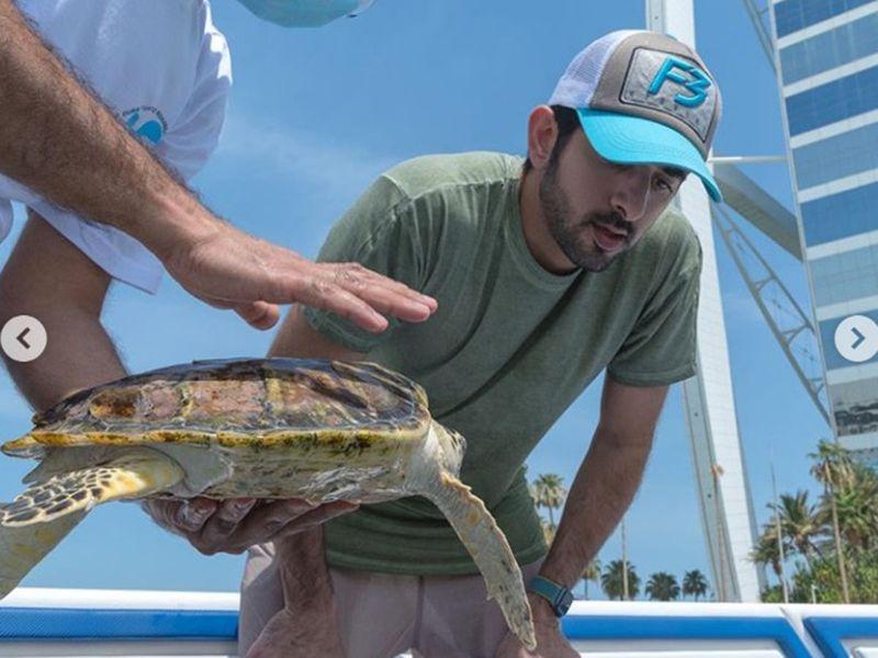 Sheikh Hamdan releases sea turtles at Jumeirah beach