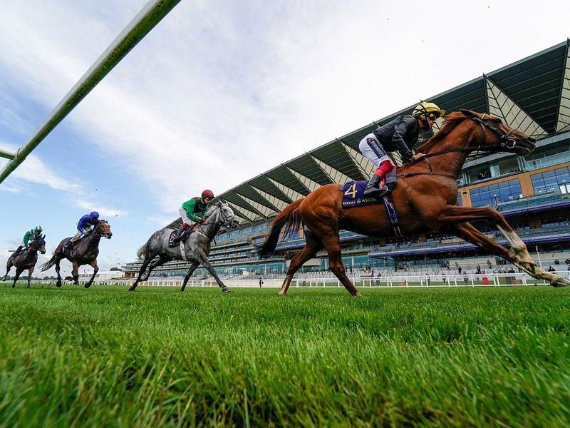 Stradivarius romps to the win at Royal Ascot