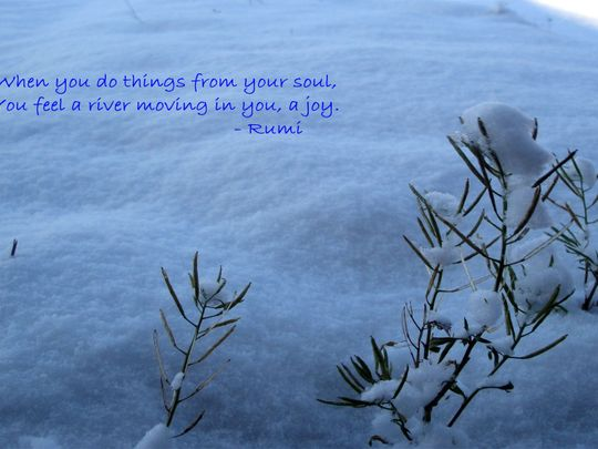 Thought Rumi
