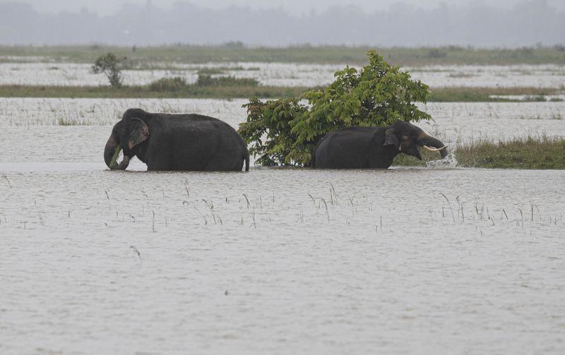 Copy of India_Monsoon_Floods_78955.jpg-9a039-1593243257310