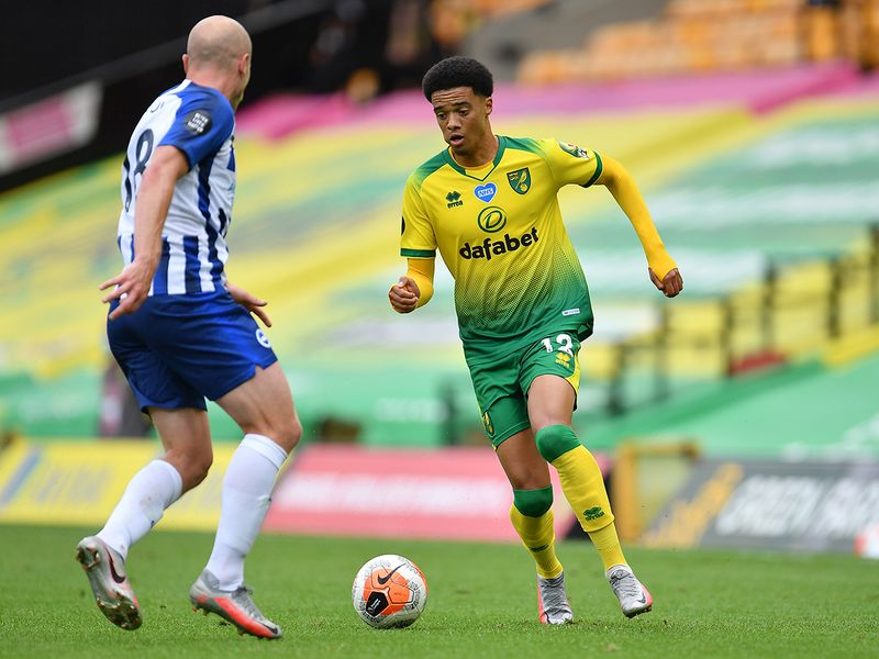 Norwich City's Jamal Lewis