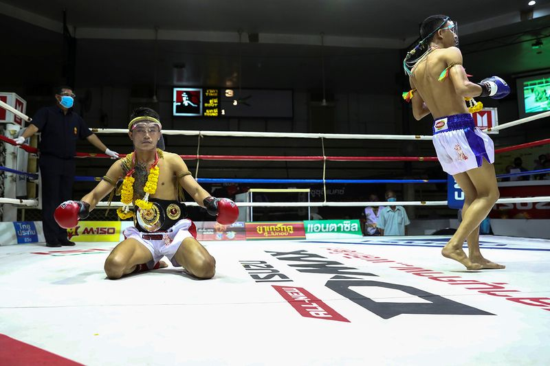 Thai boxing gallery
