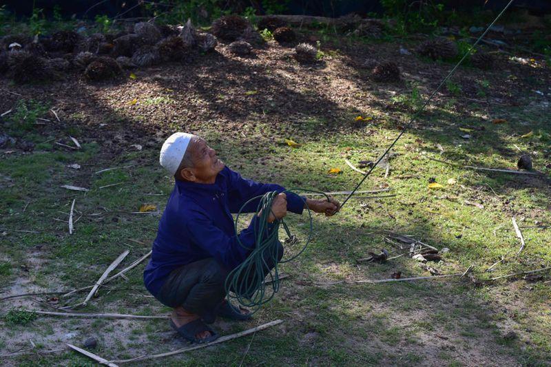 Copy of web 200709 macaque monkey 4-1594283377340