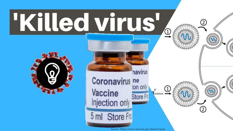 Killed virus