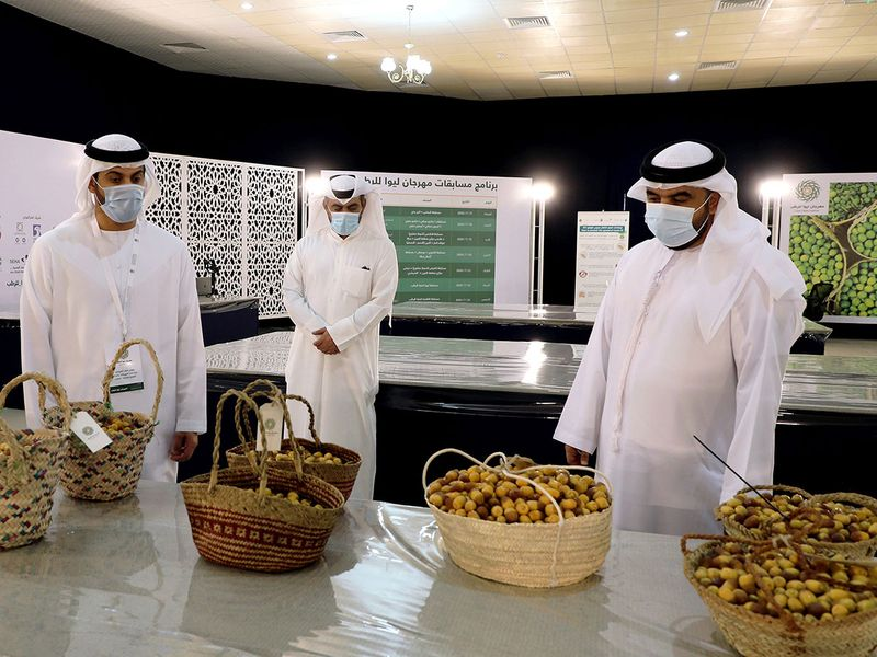 Liwa Dates Festival gallery