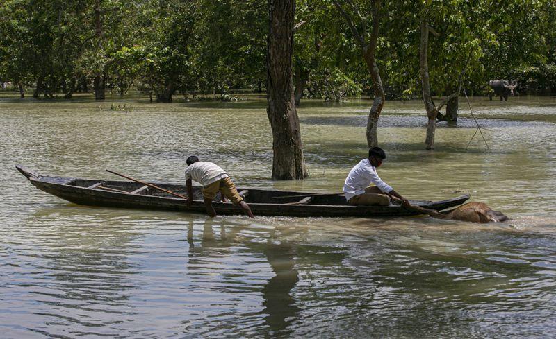 Copy of India_Floods_11494.jpg-ce597-1595134736640