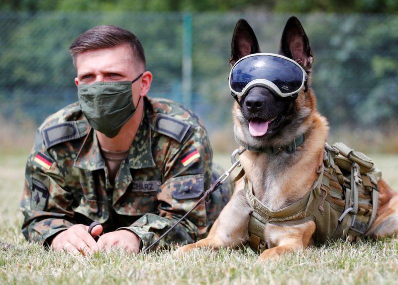 Copy of 2020-07-24T125711Z_313577388_RC2OZH9RNIP7_RTRMADP_3_HEALTH-CORONAVIRUS-GERMANY-DOGS-1595653917988