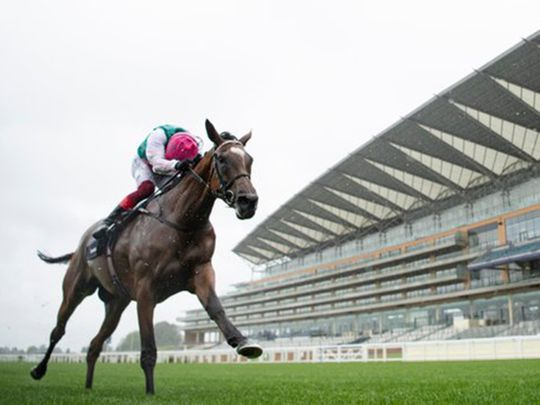 Enable wins the King George for a third time at Ascot