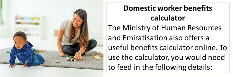 Domestic worker benefits calculator