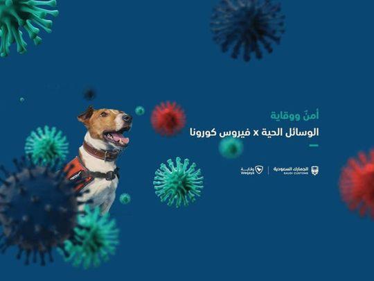 20200805_Saudi_virus
