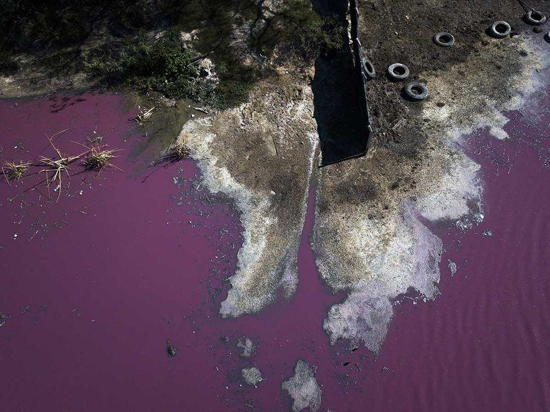 20200806 Paraguayan lagoon
