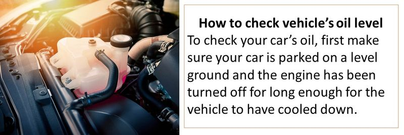 How to check vehicle's oil level