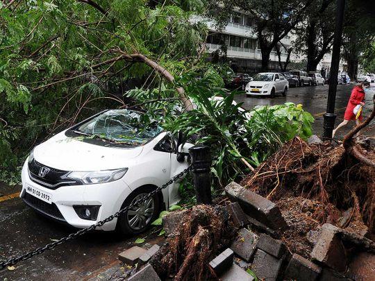 Mumbai India rain wind car tree