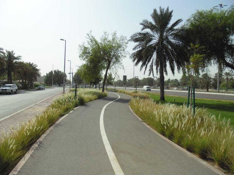 NAT 200808 Cycling Track-5-1596887396599