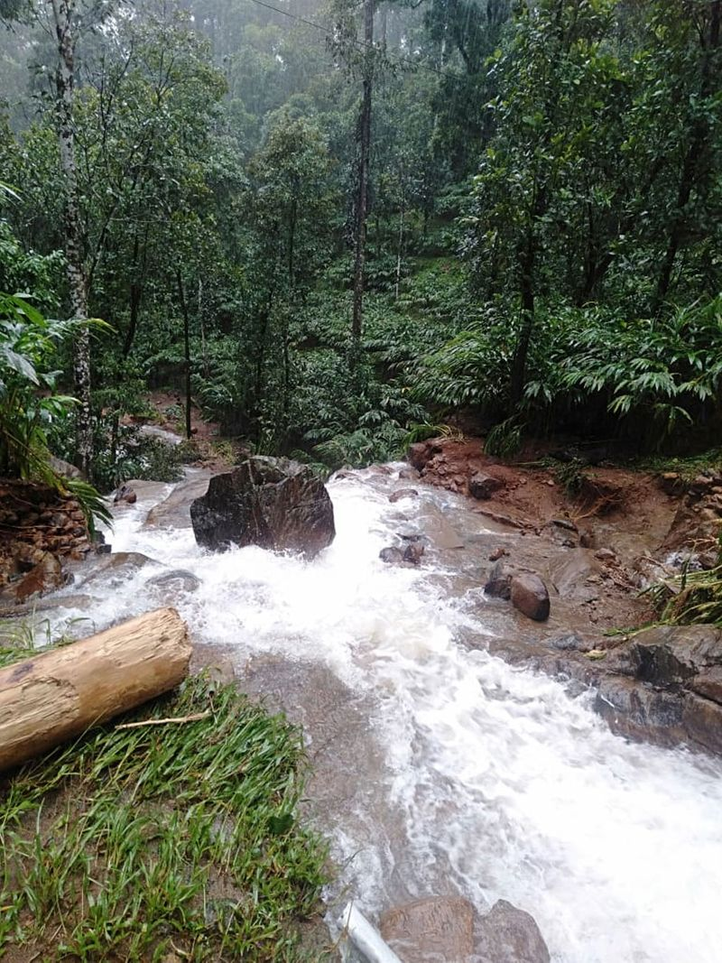 The India Meteorological Department (IMD) sounded a red alert for Idukki along with Thrissur, Palakkad and Wayanad on Saturday. The IMD has warned of widespread rainfall for the next two days.