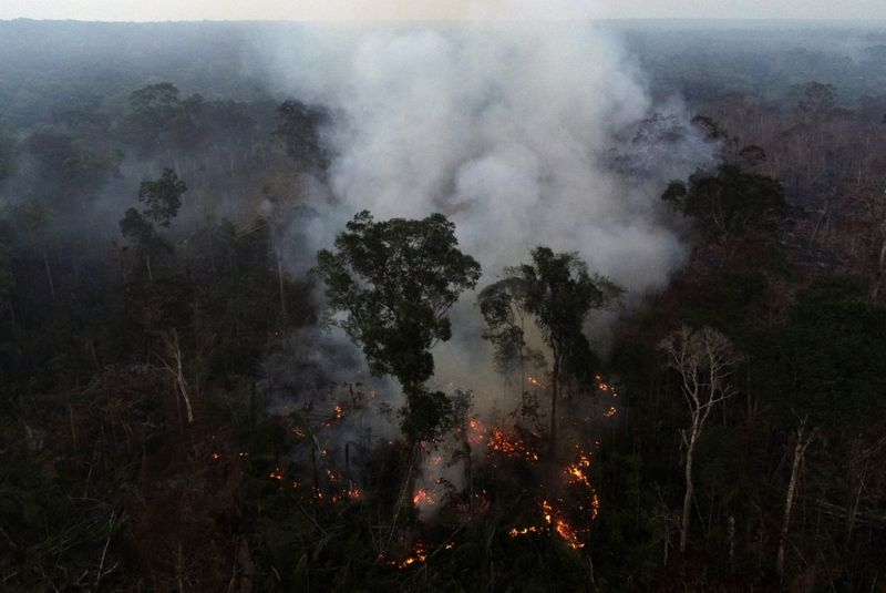 Copy of 2020-08-09T181638Z_500977509_RC2IAI986A4U_RTRMADP_3_BRAZIL-ENVIRONMENT-WILDFIRES-1597140067025