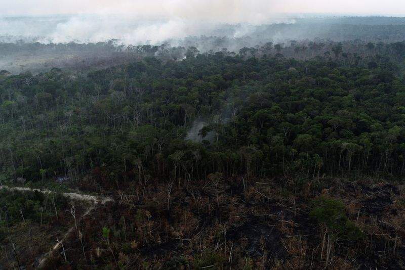 Copy of 2020-08-09T181639Z_1157721014_RC2IAI9RUS0G_RTRMADP_3_BRAZIL-ENVIRONMENT-WILDFIRES-1597140064026