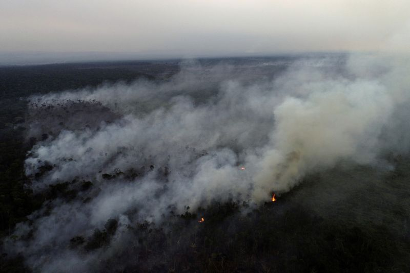 Copy of 2020-08-09T181639Z_1796061247_RC2IAI9KH6NF_RTRMADP_3_BRAZIL-ENVIRONMENT-WILDFIRES-1597140061132