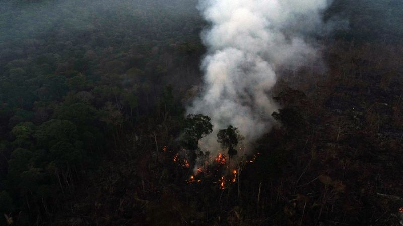 Copy of 2020-08-09T181649Z_1349852098_RC2IAI9P342M_RTRMADP_3_BRAZIL-ENVIRONMENT-WILDFIRES-1597140053044