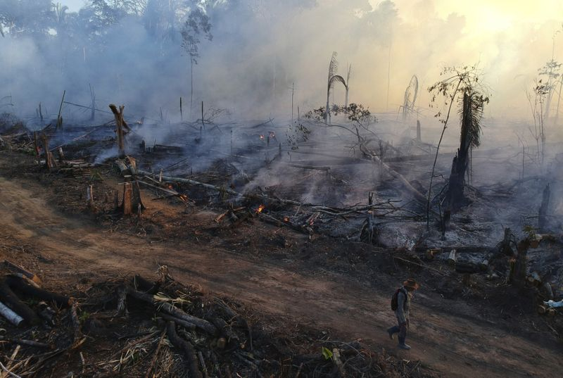 Copy of Brazil_Amazon_Fires_67624.jpg-3e5d4-1597140037472