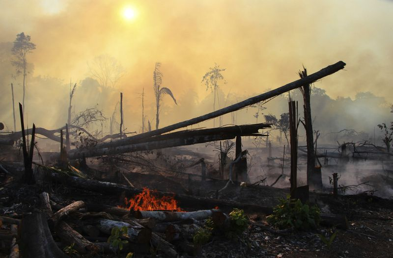 Copy of Brazil_Amazon_Fires_85707.jpg-59e19-1597140034062