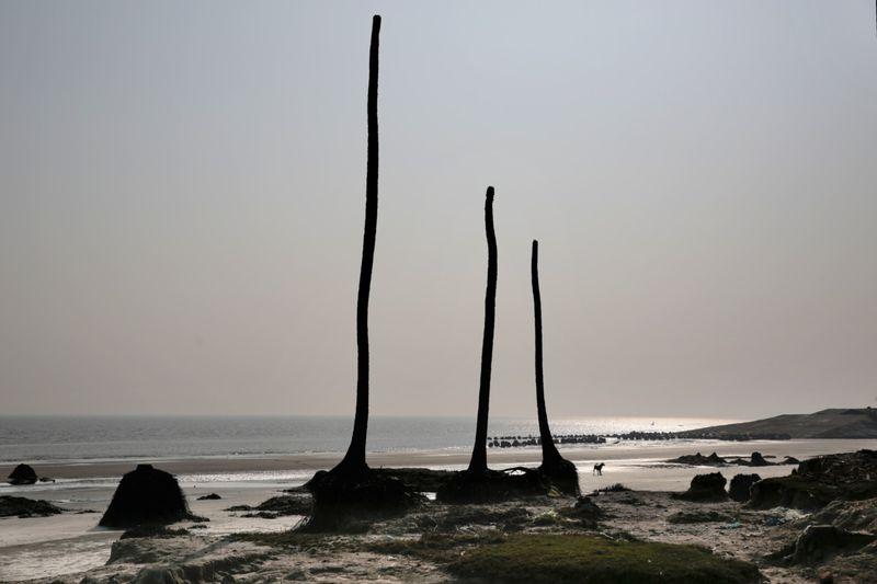 Copy of India_Ganges_Photo_Essay_01100.jpg-6b06b~1-1597137611847