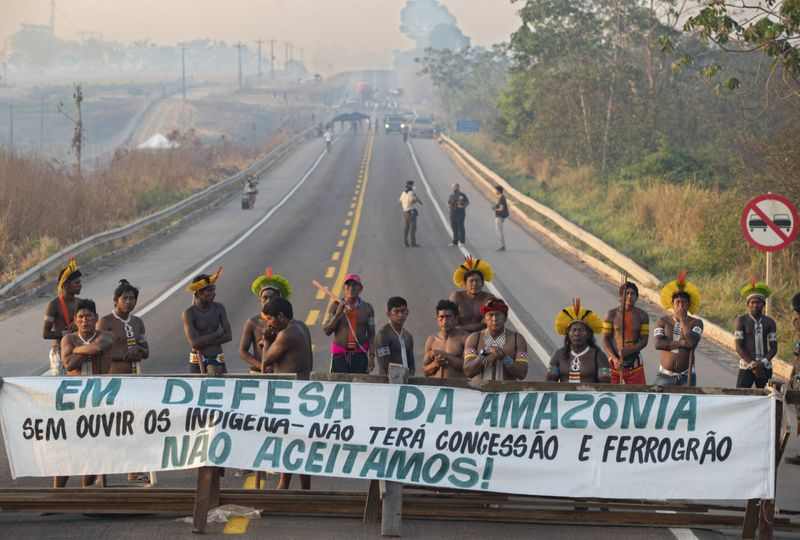 BRAZIL AMAZON2-1597682123065