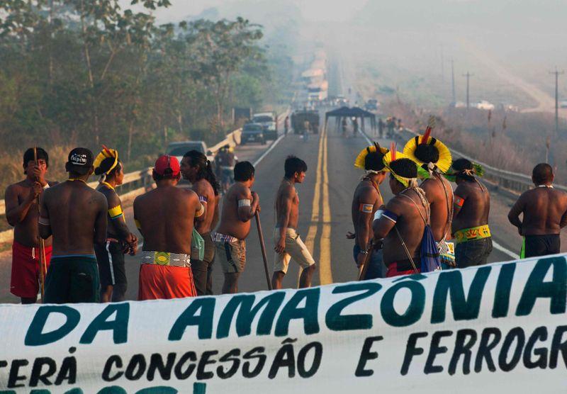 BRAZIL AMAZON33-1597682129085
